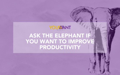 Ask The Elephant If You Want To Improve Productivity